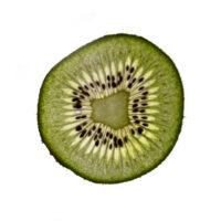9-Alina-Escher-Kiwi