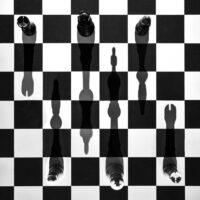 M1_Escher_Alina-17-Jahre-Schattenspiel