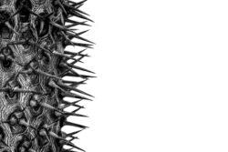 M2_Escher-Alina-17-Jahre-Achtung-piksig