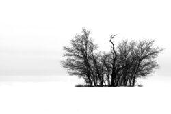 M3_Keil_Felix_14J_Winterlandschaft
